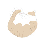 猫のダンボールハウス