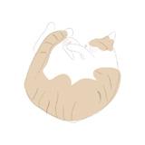 猫のけりぐるみ