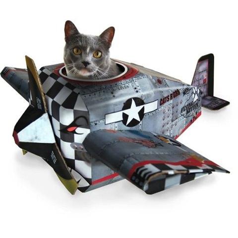 キャットプレイハウス飛行機