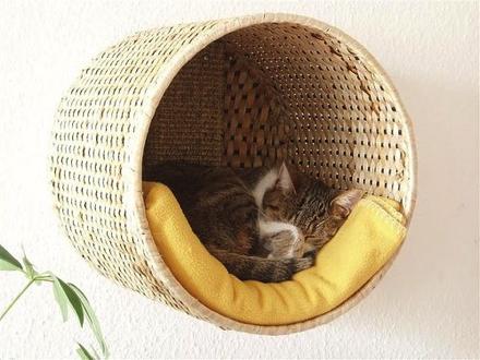 Cardboard Cat House Plans