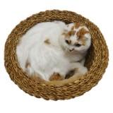 麦わら帽子みたいな猫ベッド