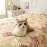 猫がベッドやソファで毛玉を吐いても安心のマルチカバー