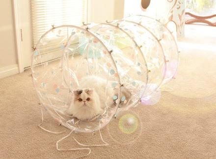 猫が遊べる手作りキャットトンネルのアイディア3選