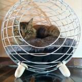 球形キャットハウス