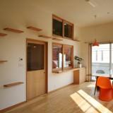 猫のために設計されたデザインハウス