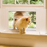 猫のための出窓