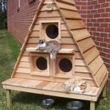 庭に置きたいキャットハウス