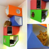 猫のカラフルボックス