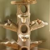 両翼を広げたトーテムポールみたいなキャットタワー