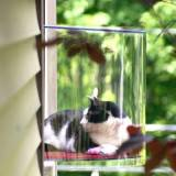 猫のための透明の出窓