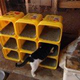 猫のためのハンドメイドのコンドミニアム