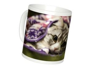 猫の写真から作れるオーダーメイドのマグカップ