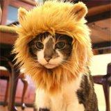 ライオンに変身できる猫用ウィッグ