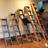キャットタワーっぽく使えるはしご
