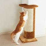 壁やソファを猫のつめとぎにできる便利グッズ