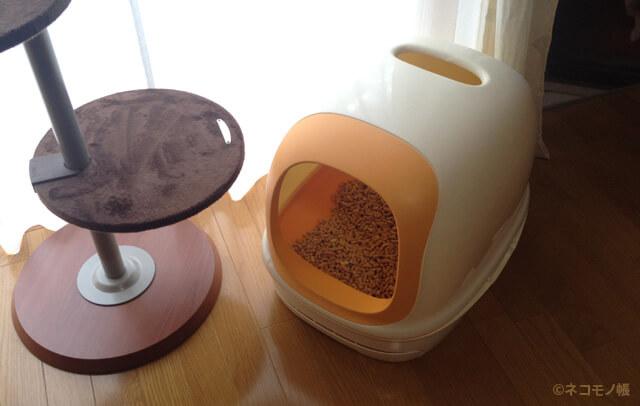 はじめての猫トイレ購入ガイド