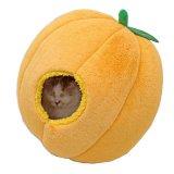 柑橘類は苦手だけどこれなら大丈夫な猫のミカンベッド