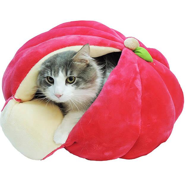 真っ赤なりんごの猫ベッド