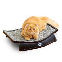 カーペットで爪とぎするのが好きな猫に試したい絨毯タイプのつめとぎベッド