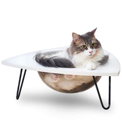 くつろぐ猫を360度あらゆる方向から眺められる透明キャットベッド
