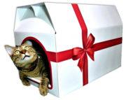 リボンのついたプレゼント箱のようなハウス型つめとぎ