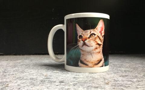 クッションやTシャツなどのオリジナルの猫グッズが作れるサービス