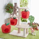 りんごの木のキャットタワー